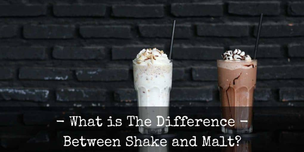 Difference Between Shake And Malt 1020x510