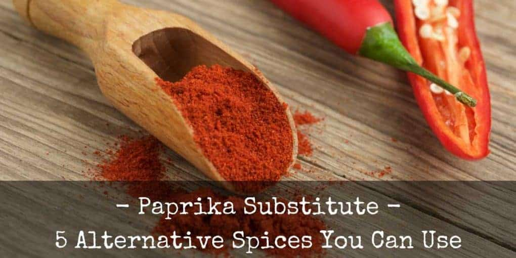 Paprika Substitute 1020x510
