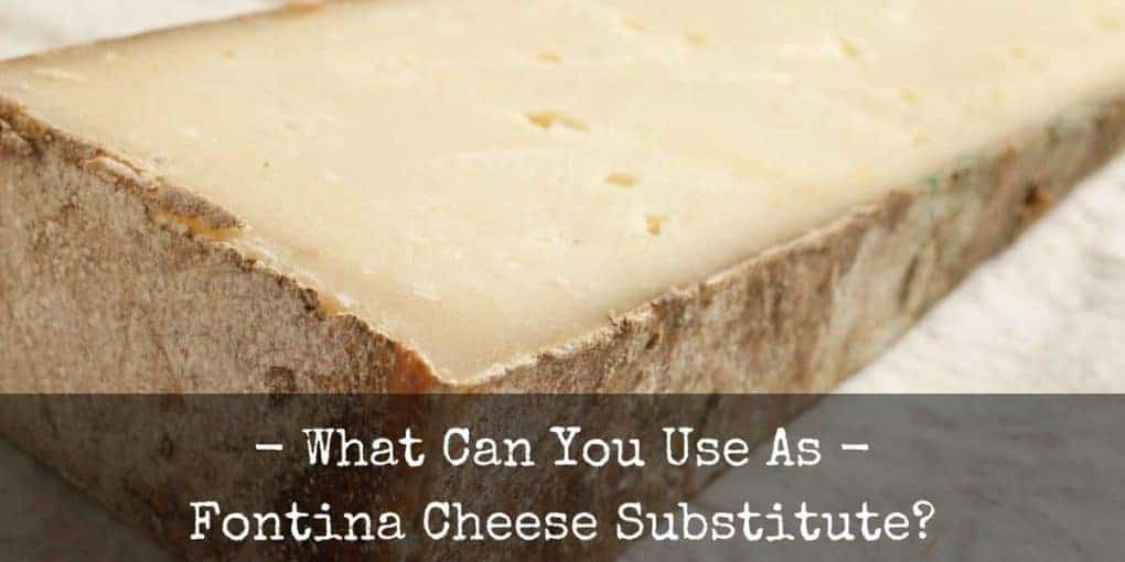 Fontina Cheese Substitute 1020x510