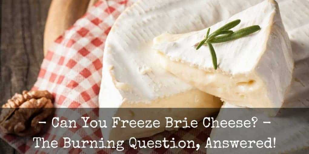 Can You Freeze Brie 1020x510