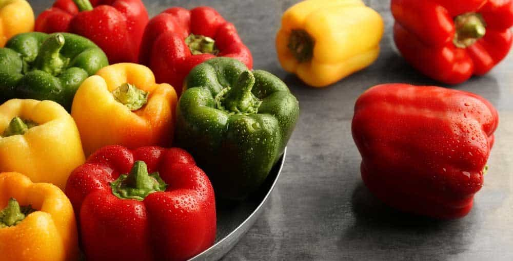 How To Store Peppers 1000x510