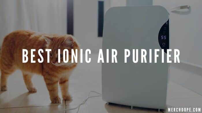 Best Ionic Air Purifier