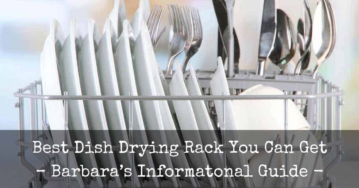 Best Dish Drying Rack