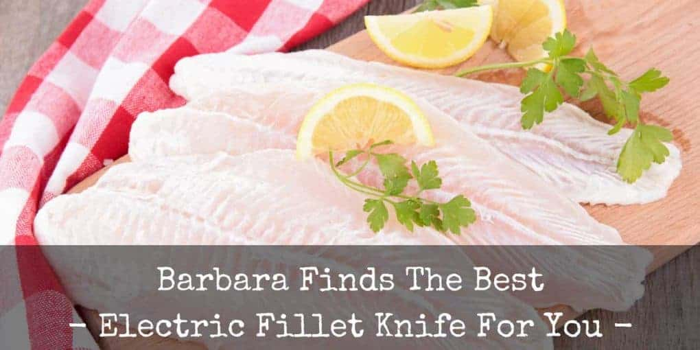 Best Electric Fillet Knife Reviews 1020x510