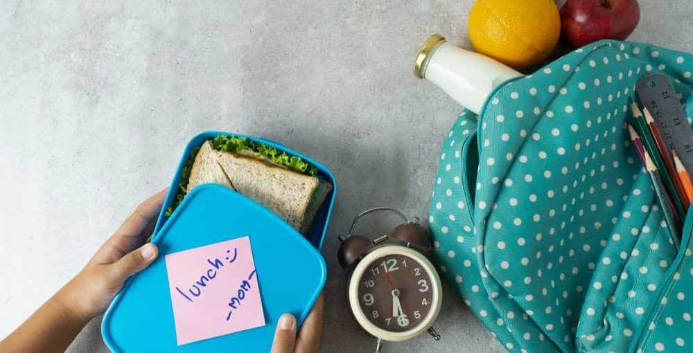 Best Lunch Box Reviews 1000x510