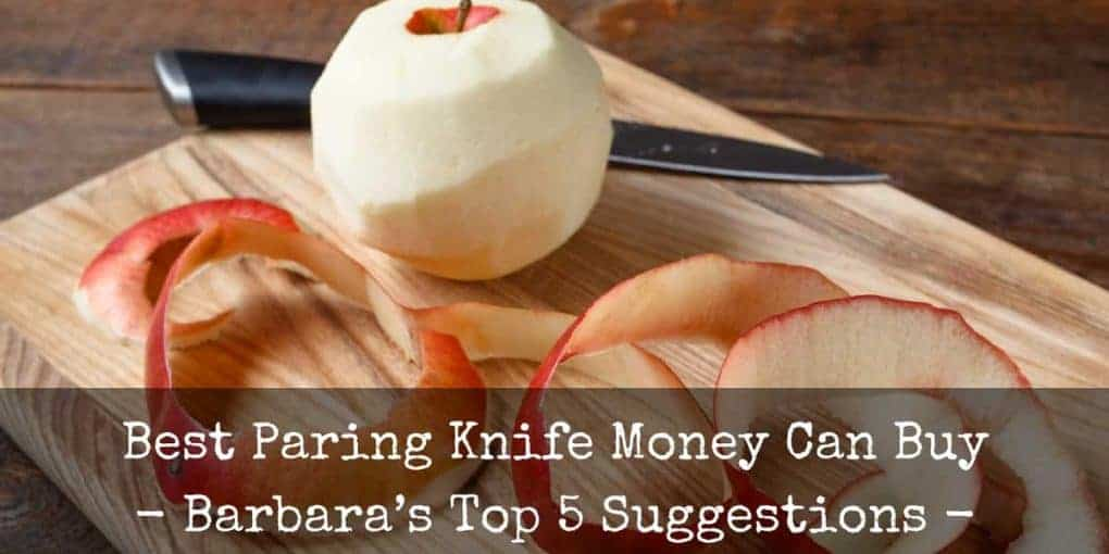 Best Paring Knife Reviews 1020x510