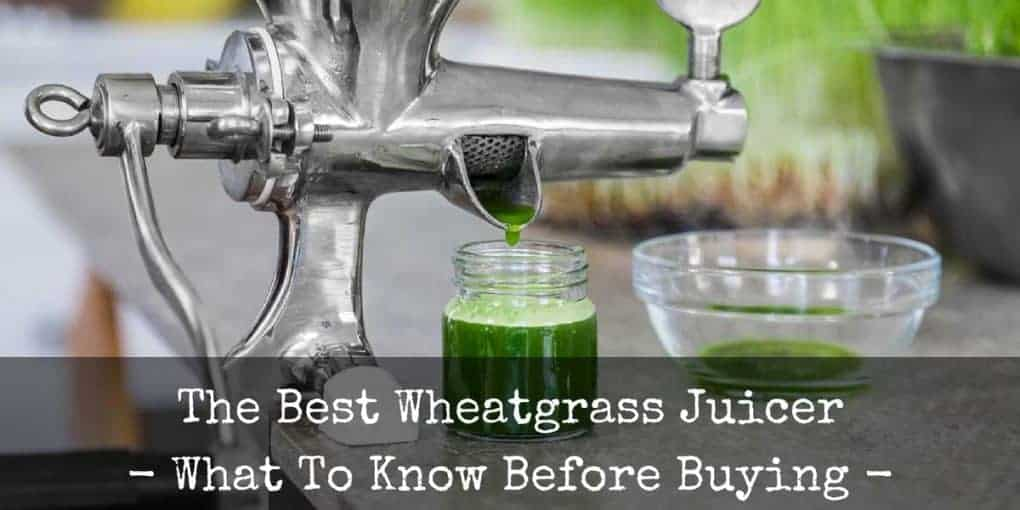 Best Wheatgrass Juicer Reviews 1020x510