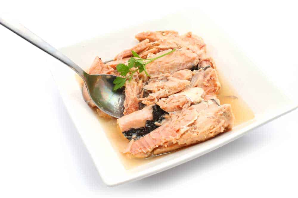 Best Canned Salmon Eat
