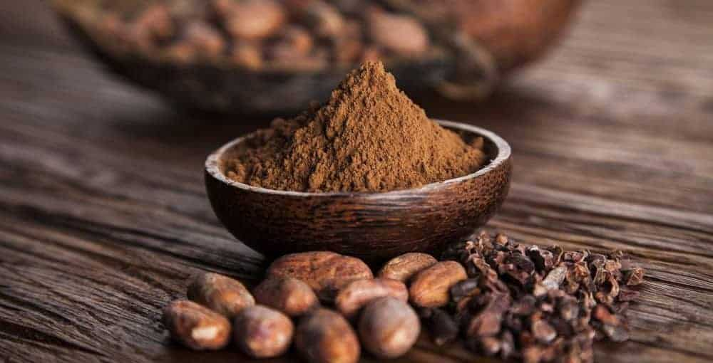 Best Cocoa Powder Reviews 1000x510