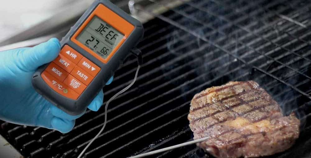 Best Wireless Meat Thermometer Reviews 1000x510