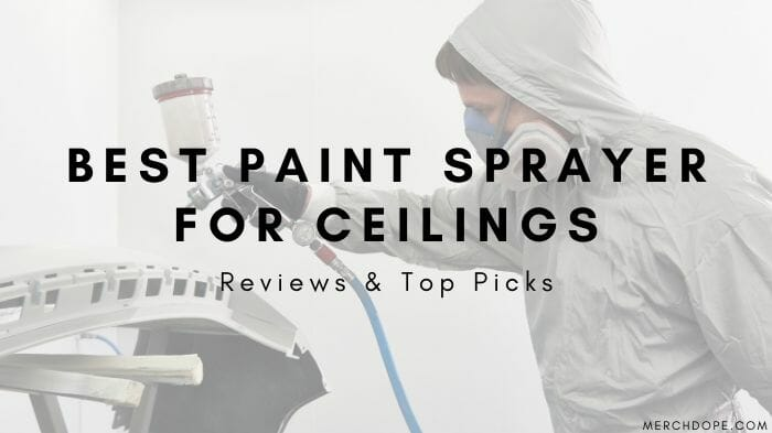 Best Paint Sprayer For Ceilings
