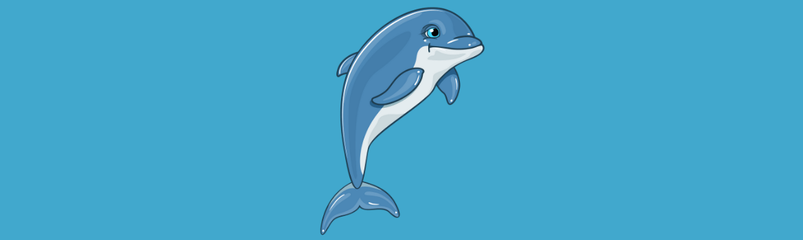 dolphin gifts