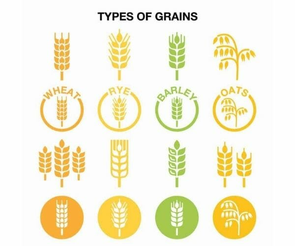 types-of-grains